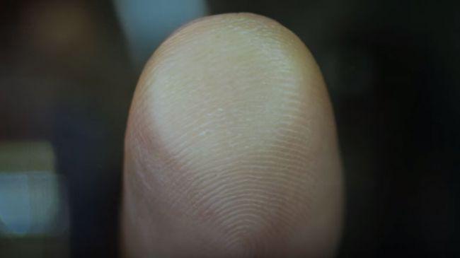 fingerprint-650-80